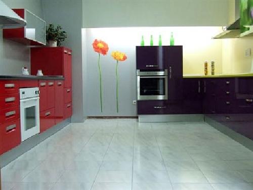 Foto cocinas actuales de obrasyoficios 251182 habitissimo for Cocinas actuales