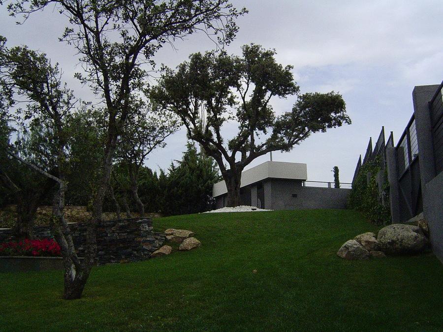 construcción de jardín con césped natural