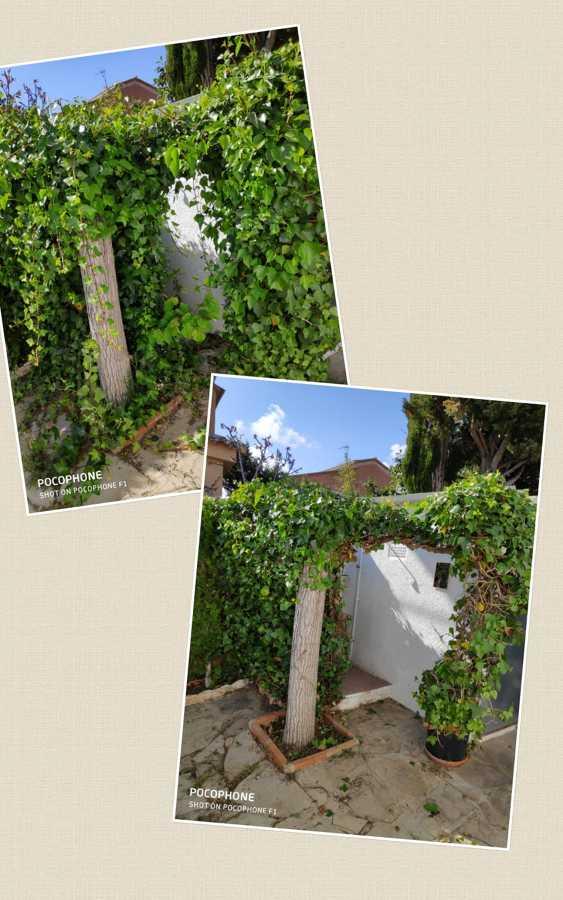 Servicio de jardinería Creixell
