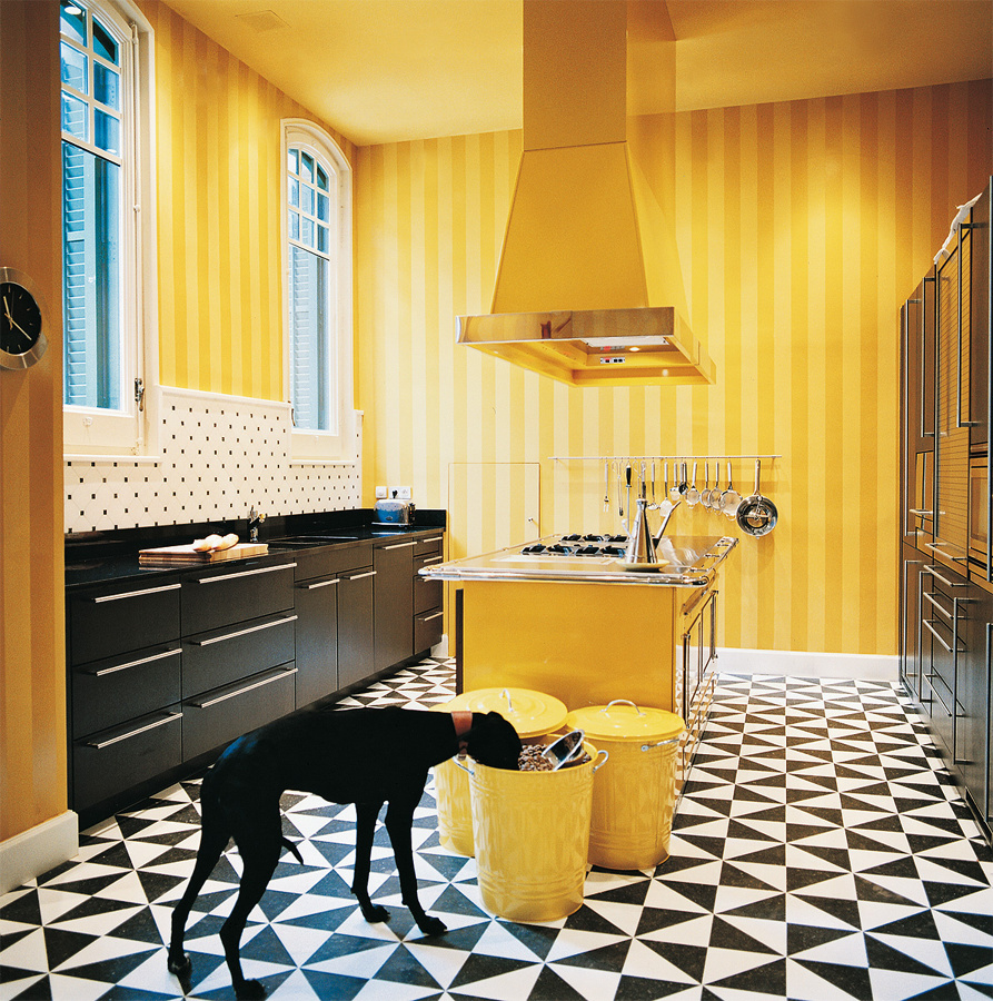 Foto cocina en amarillo de nautilus studio 1091725 for Cocina con electrodomesticos de color negro