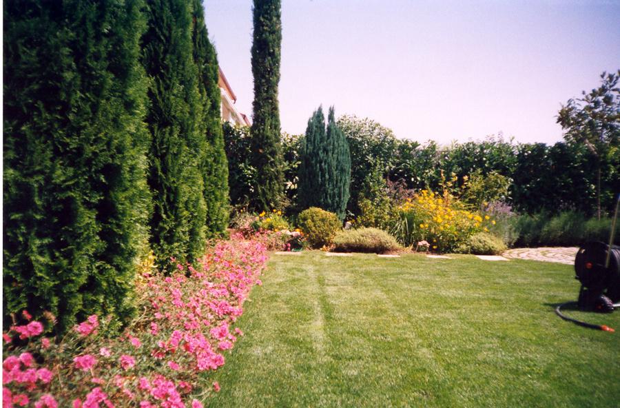 Foto decoracion jardin de paisaje jardiner a profesional for Decoracion jardin granada