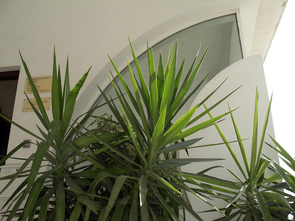 Despacho arquitectura Arroyo de la Miel