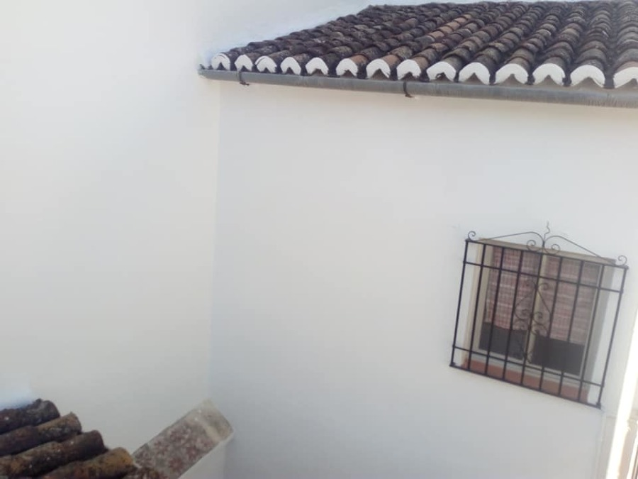 Limpieza de tejado y fachada pintada
