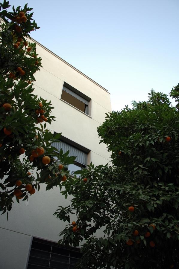 Edificio de nueve viviendas