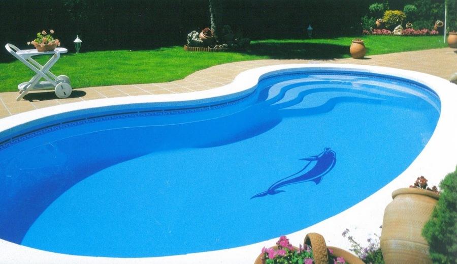 Foto especialistas en reforma de piscina de construplac for Piscina delfin madrid