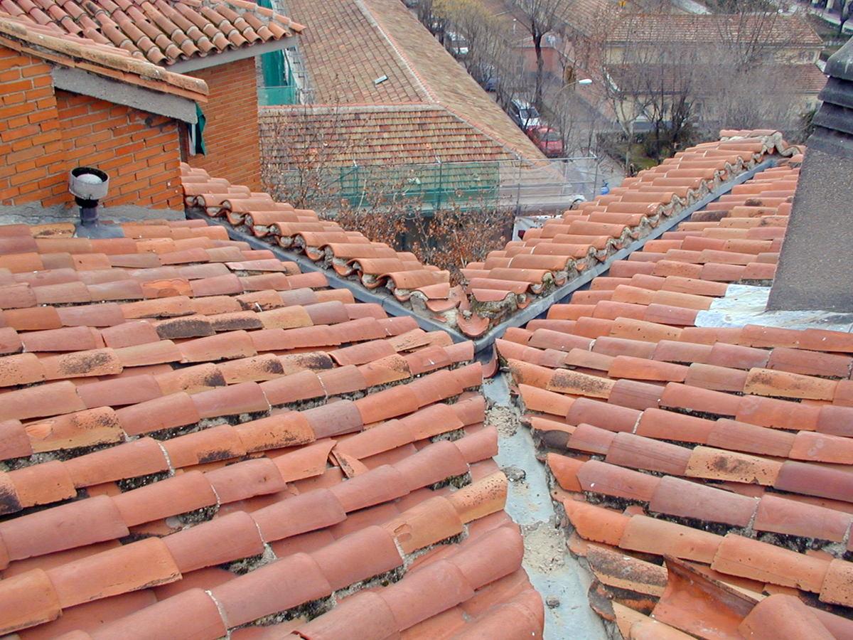 Foto estado original de tejado con teja curva de tfa for Tejados de madera con teja