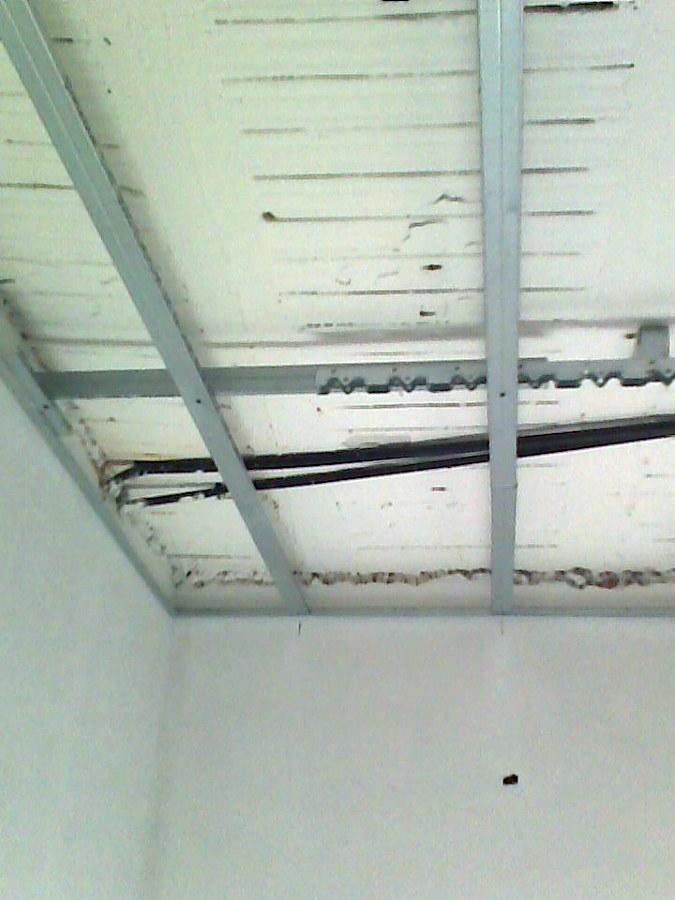 Decoracion en escayola y pladur precios economicos car for Precio techo pladur