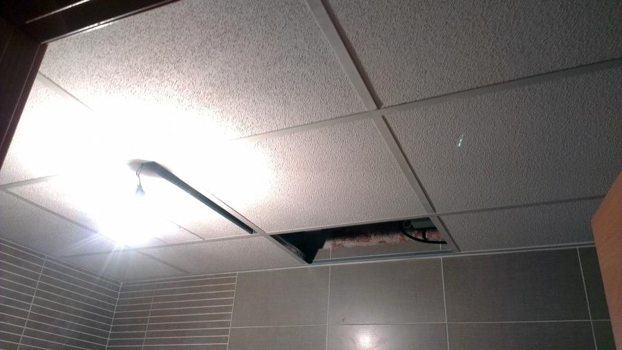 Foto falso techo de amstromg de mafersi 290005 habitissimo for Falso techo rustico