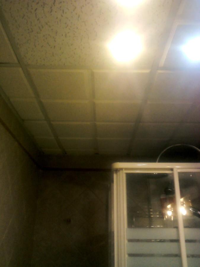 Foto falso techo en cuarto de ba o de reformas nerea - Falsos techos para banos ...