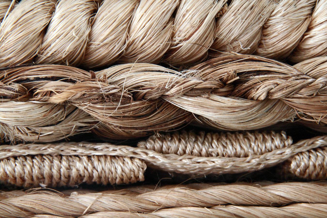 Foto alterra fibras naturales de alterra 222038 habitissimo - Alfombras fibras naturales ...