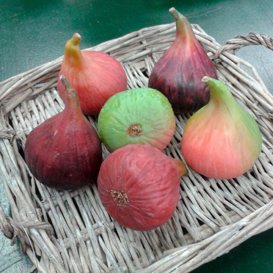 Foto frutas artificiales higos de - Frutas artificiales para decoracion ...