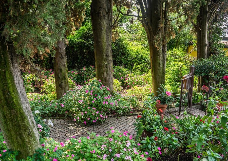 Foto Jardín Rustico de Jardineria Garrotxa #1245767  Habitissimo