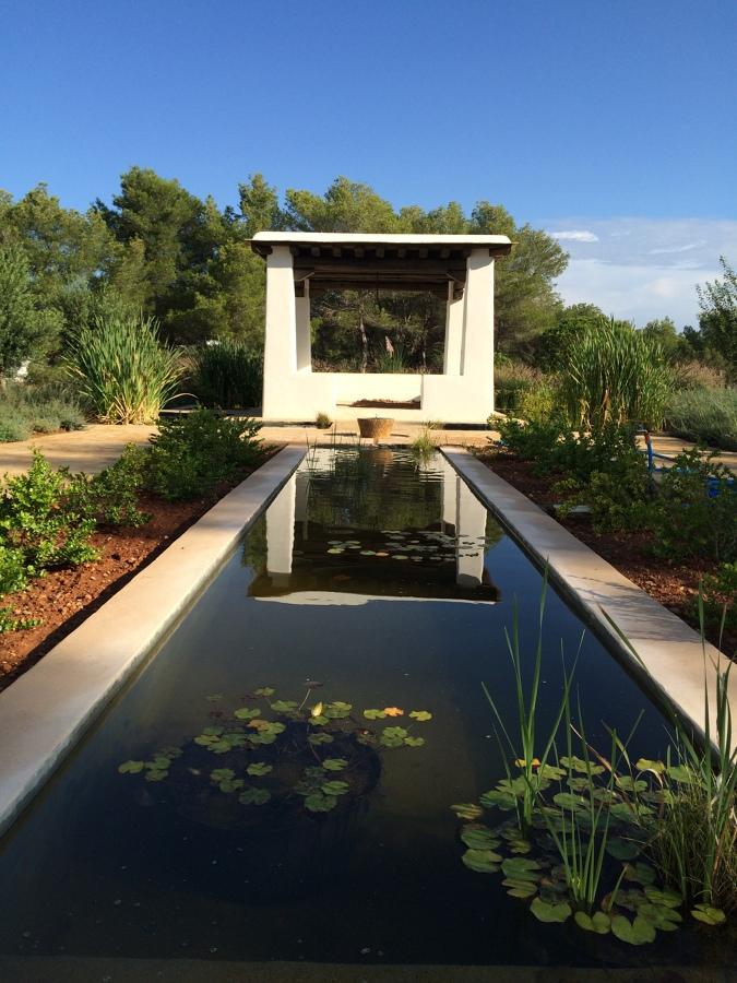 Jardines con plantas acuáticas