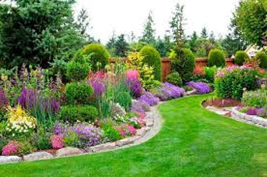 mantenimeinto de jardines