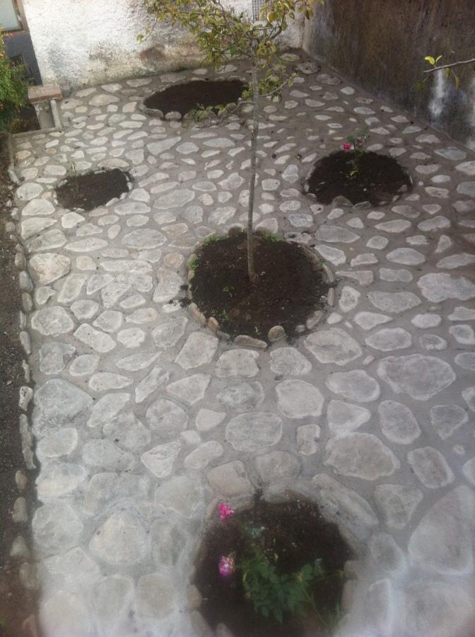 Foto pavimento de piedra en jardin de ml construccions for Pavimentos de jardin