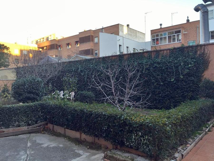 Foto hiedra en fachada de alberto l pez 1562902 for Jardines de alberto granada