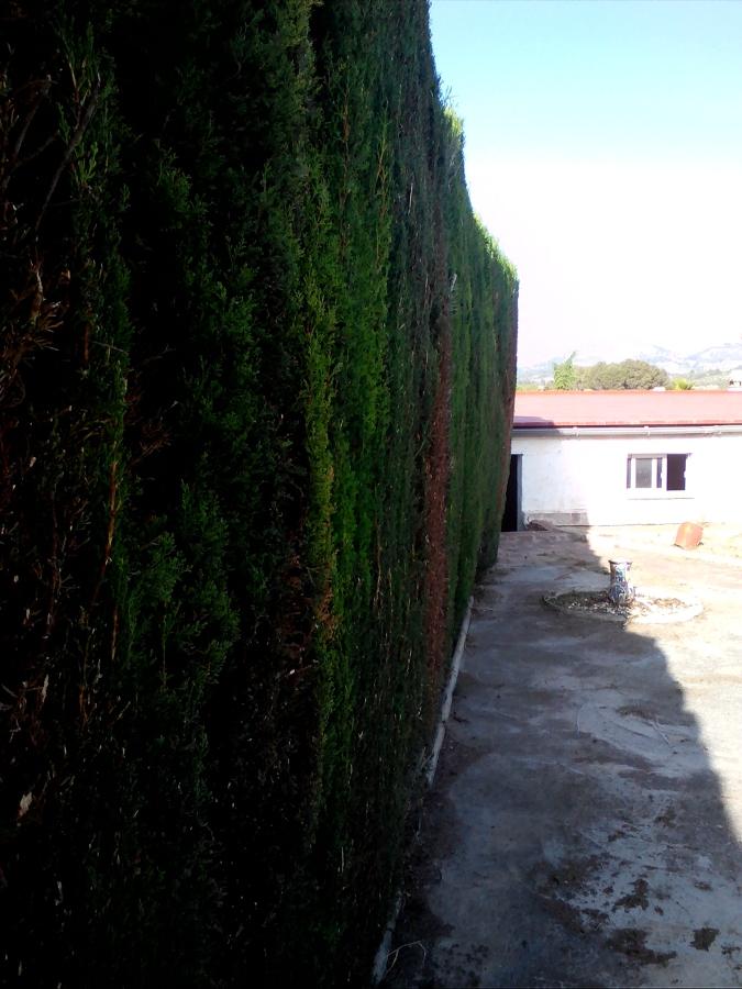 acondicionado de jardin