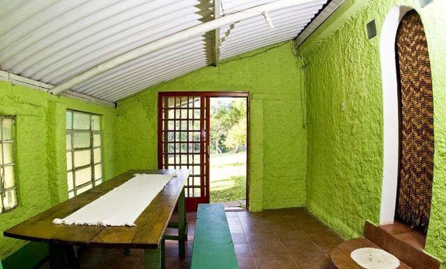 Pintado paredes y techos