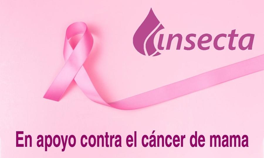Apoyando al cáncer de mama