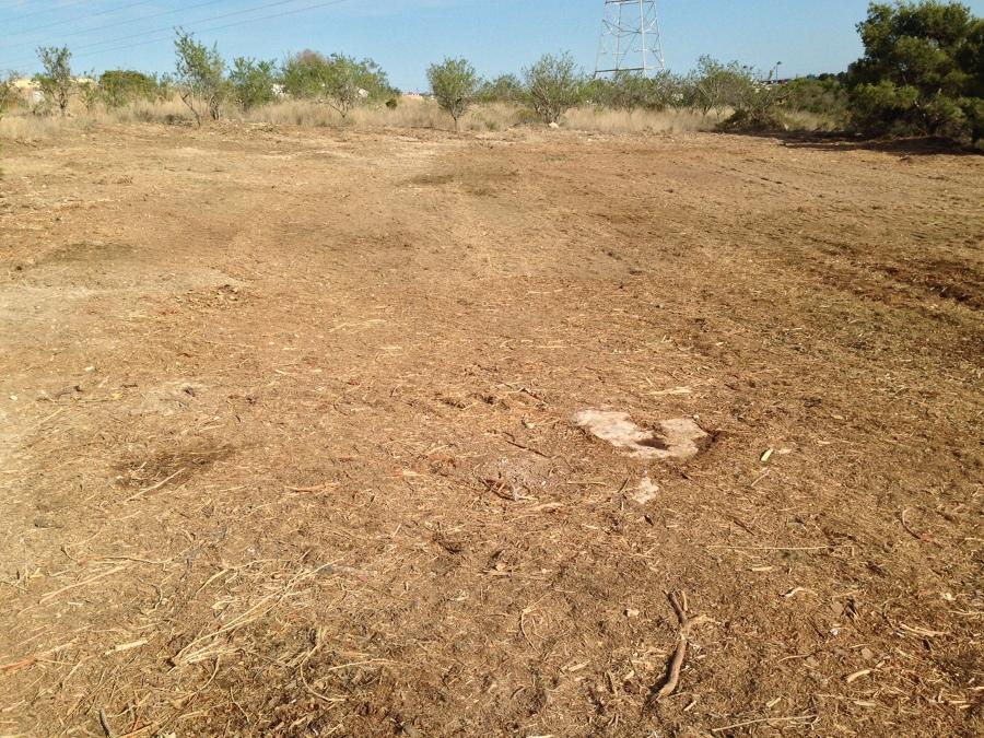 Triturado de restos de podas