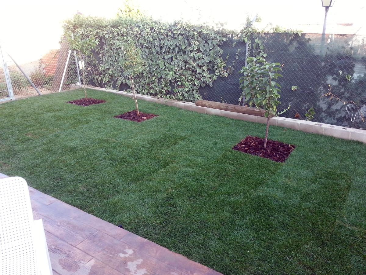 foto jardin ecologico de casa jardines 437561 habitissimo