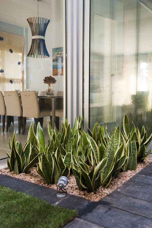 Foto jard n minimalista en patio interior de david for Jardineras iluminadas