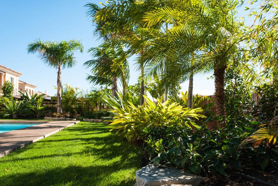 Jardín tropical en Alicante
