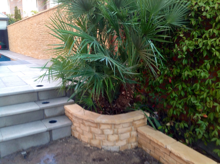 Foto jardinera palmera de radu marin piscinas s l - Jardineras de madera grandes ...
