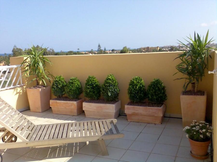 Foto jardineras en terraza atico de jarditec s c 255691 for Decoracion azoteas fotos