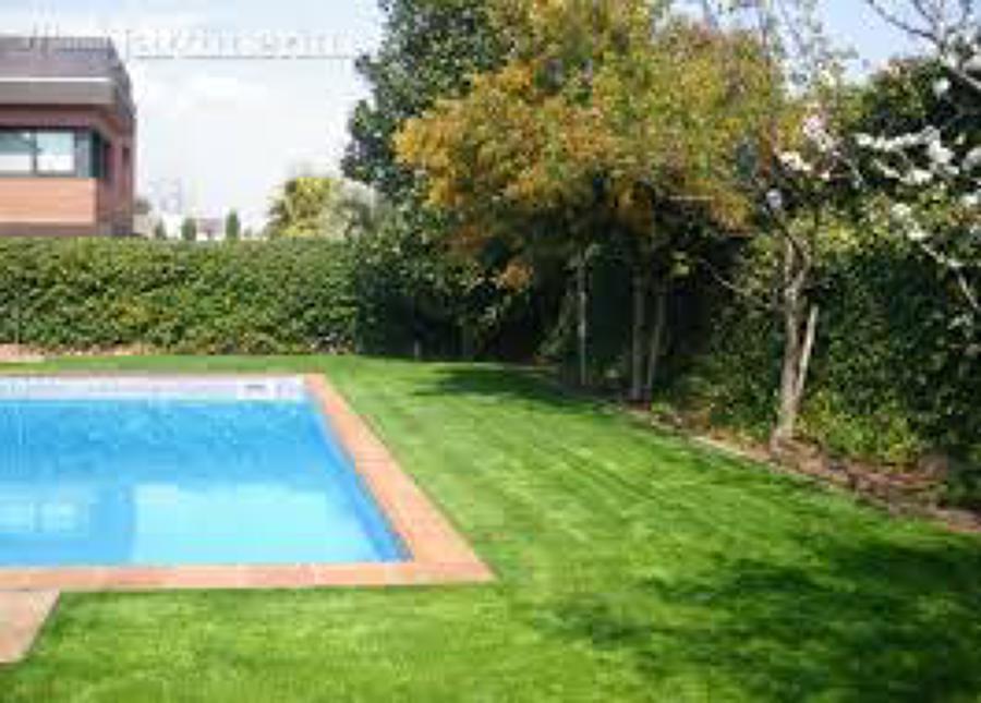 Foto jardineria construcio i manteniment de joim for Jardineria sabadell
