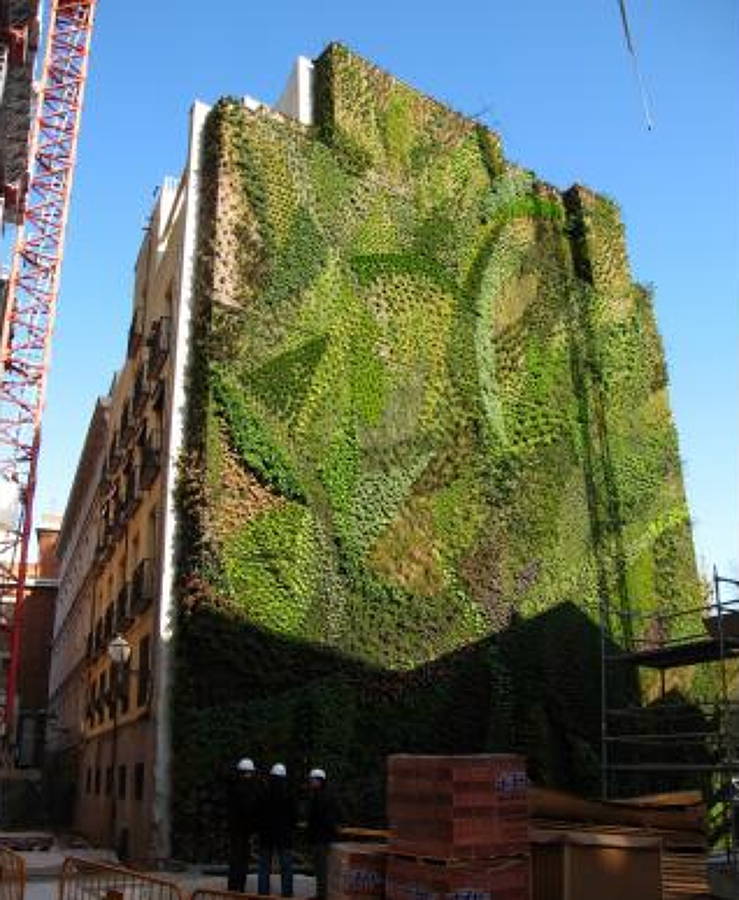 Foto jardines verticales verticalgarden de e construtec for Jardines verticales valencia