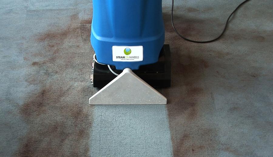 Foto limpieza a fondo de moquetas alfombras de vapor for Precios limpieza alfombras madrid