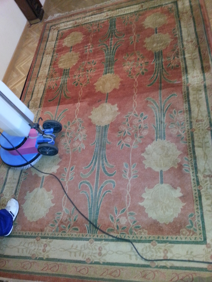 Foto limpieza de alfombra de tapiclean 528383 habitissimo - Limpiador de alfombras ...