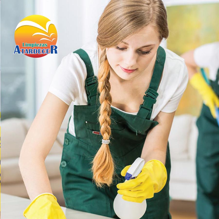 Limpieza de salones en Chalets