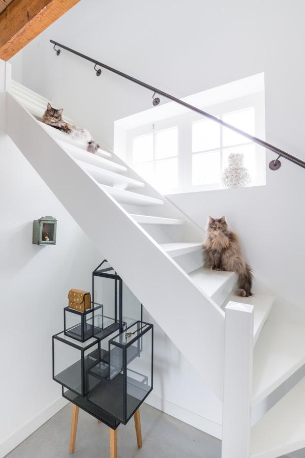 Fotografía de arquitectura e interiorismo