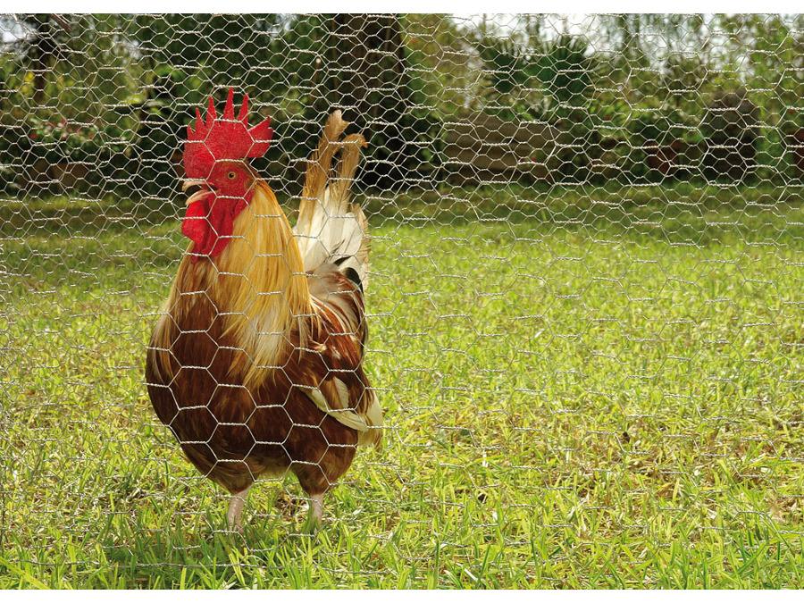 Malla hexagonal o gallinera o conejera