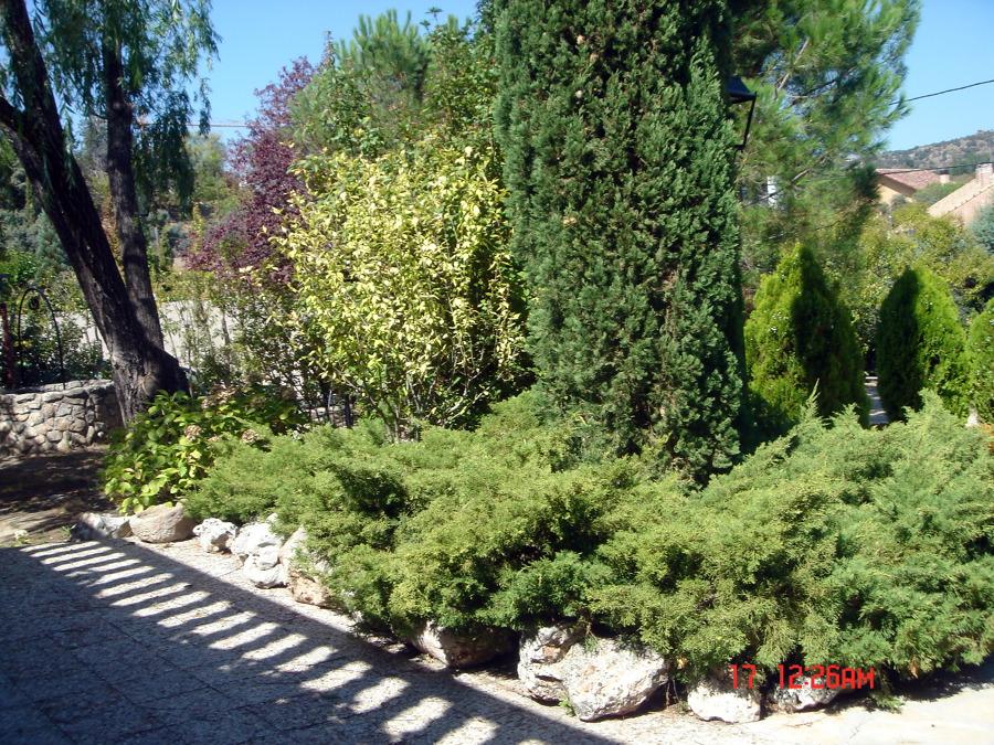 Foto mantenimiento de jardines de home garden works for Mantenimiento de jardines