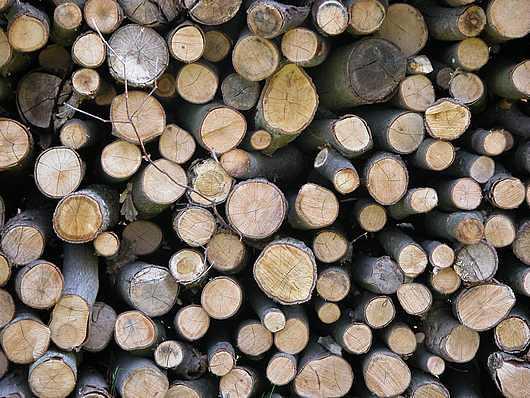 Foto materiales naturales madera de arquitectura sana for Que es la veta de la madera
