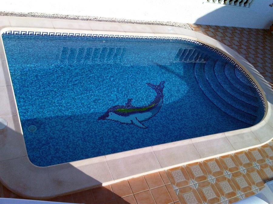 Foto modelo bala con dibujo en el fondo de piscinas for Limpieza fondo piscina
