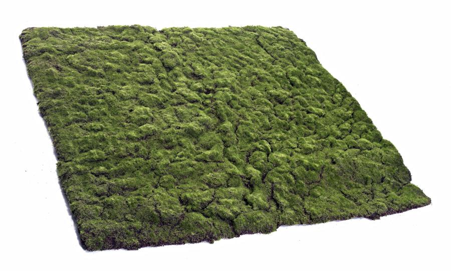 Foto musgo artificial para jardines verticales de for Jardines verticales valencia