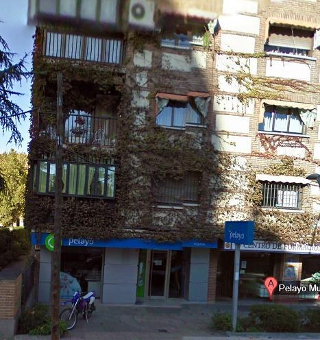 Foto oficina de seguros pelayo de omb arquitecto t cnico for Oficina pelayo sevilla