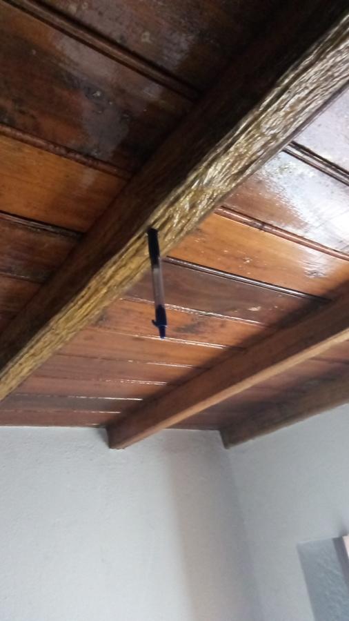 Viga atacada por termita