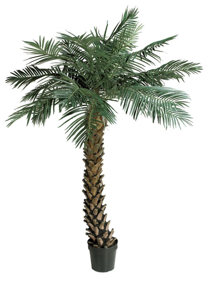 foto palmeras artificiales de plantas