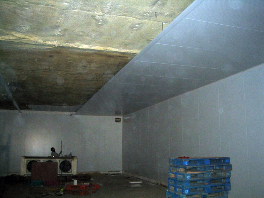 Panel frigorifico en camara de congelación
