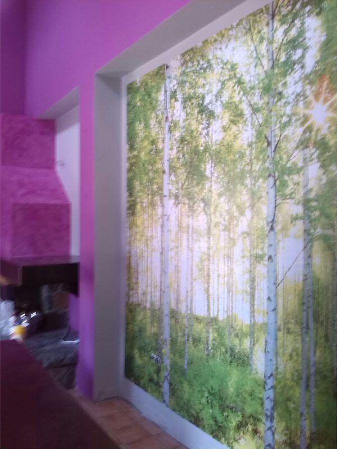Foto papel pintado mural de mas q pinturas 549422 for Papel pintado tenerife