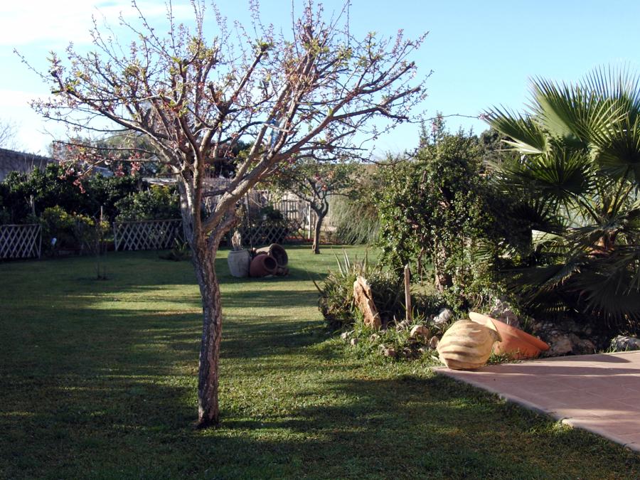 Parte trasera jardin particular