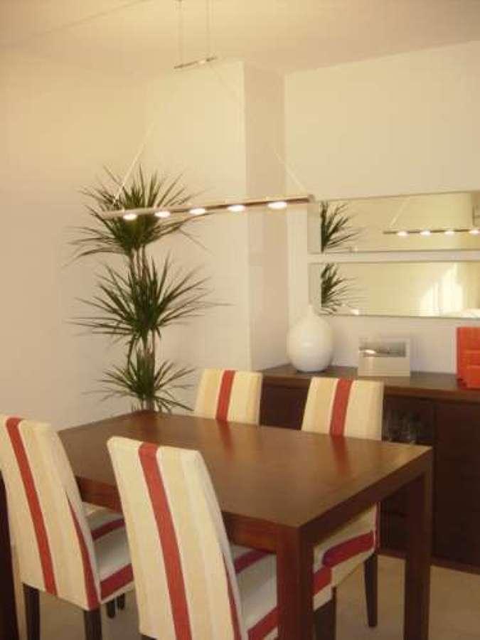 Foto pintura de comedor en color blanco de pintores for Espejos para salon comedor