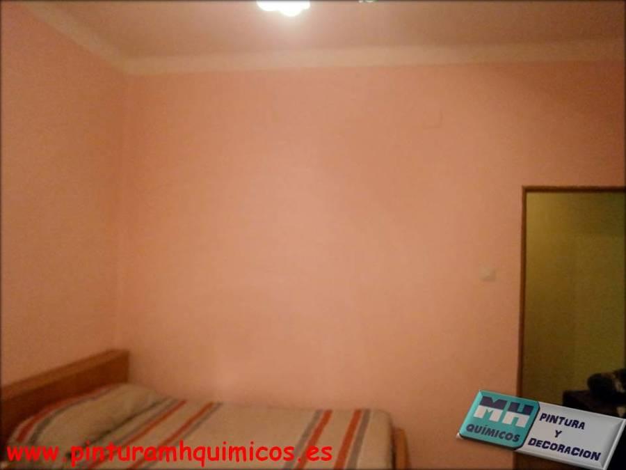 Foto pintura plastica mate de mh quimicos 281654 - Precios pintura plastica ...