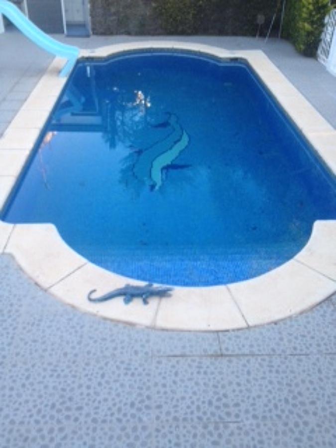 Foto piscina canto romano de construcciones y reformas for Piscina delfin madrid