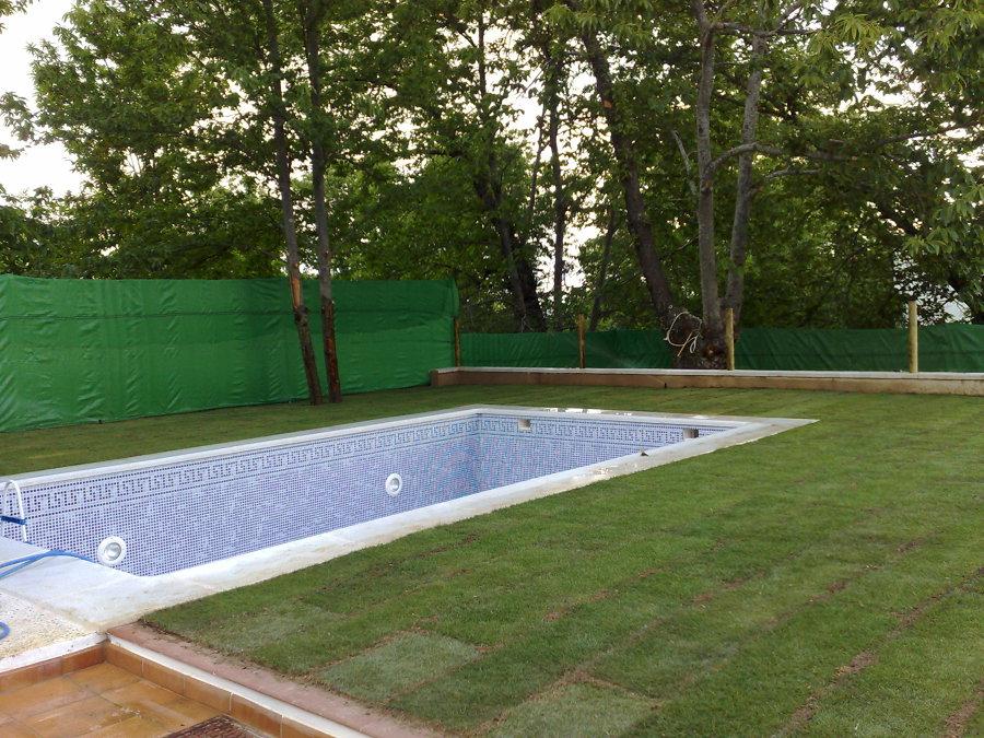 piscina con cesped